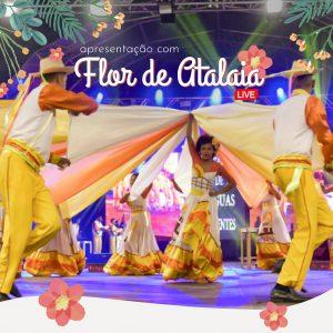 Espetáculo: O Siriri Bonito é Nóis que Vai Fazer com o Grupo Flor de Atalaia   Cena em Pauta @ Facebook e YouTube do Sesc Mato Grosso