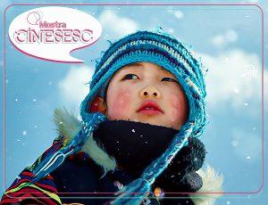 CineSesc - Takara @ Cinema - Sesc Arsenal