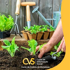 Ciclos de Valorização Social - Curso de Jardinagem @ Sesc Cáceres